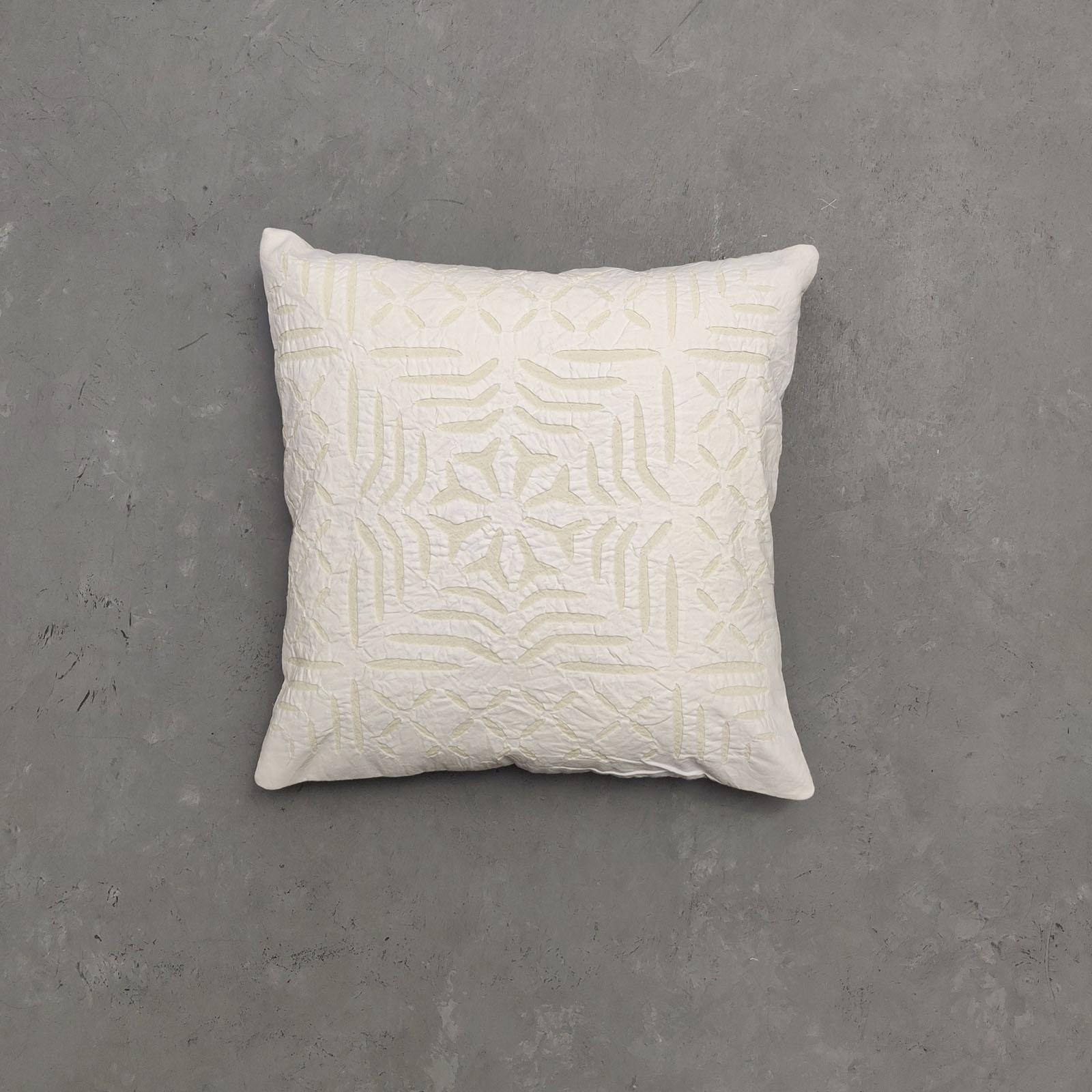Applic Cushion Cover CCW23
