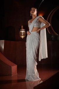 Silver Stitched Saree