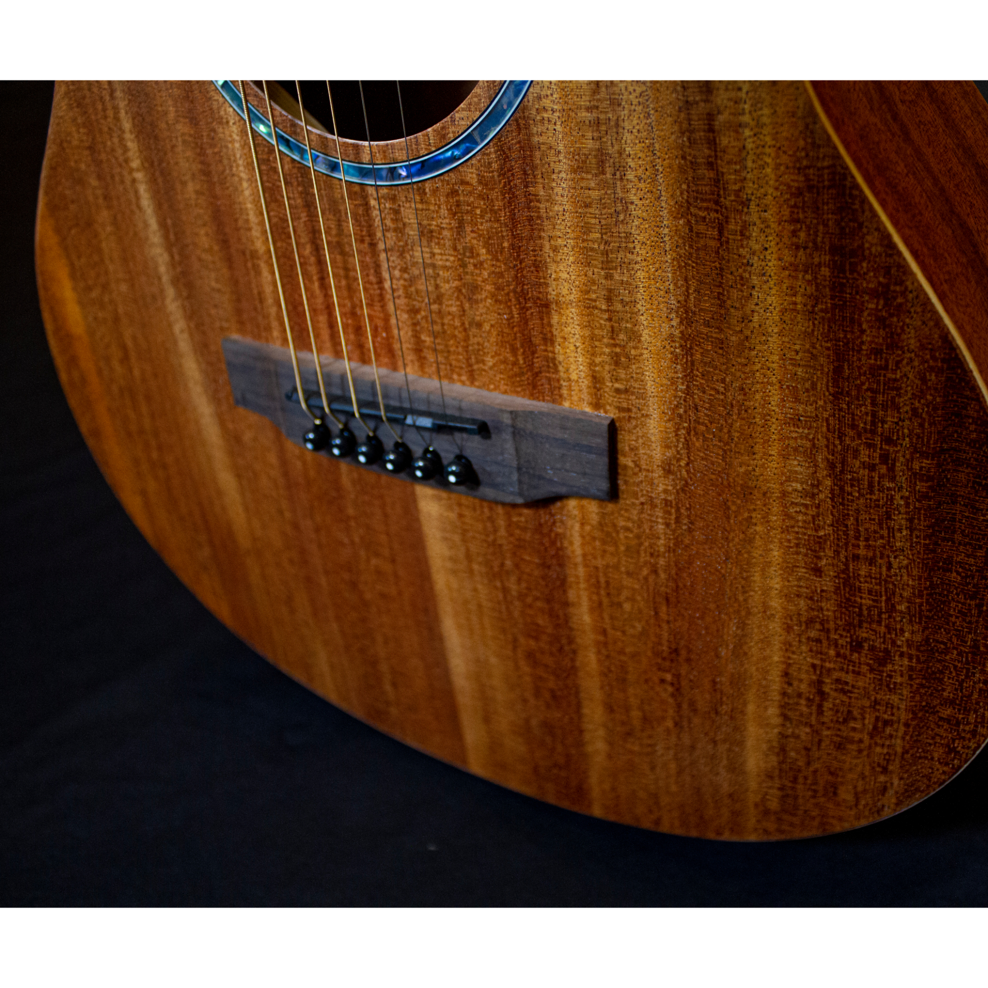 Richtone  RT BG2 NA Travel Acoustic Guitar - All Mahogany