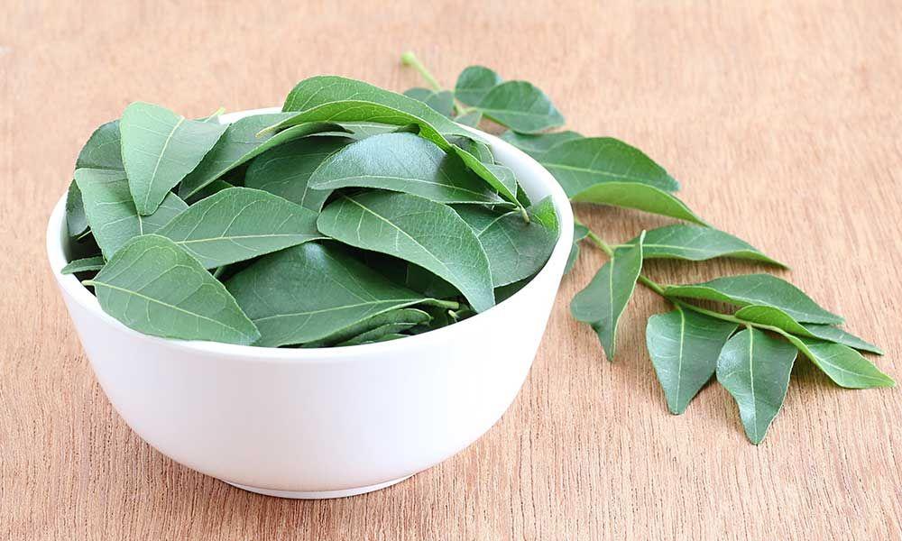 Health Benefits of Curry Leaves (Kadi Patta)