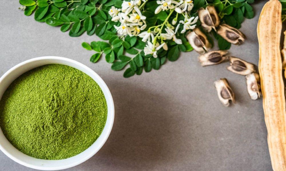 Moringa Powder Health Benefits & Uses