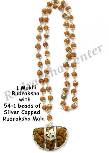 One Mukhi Rudraksha with Capped Rudraksha Mala