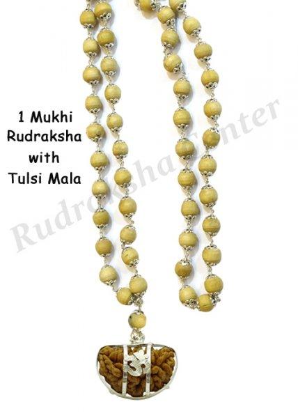 One Mukhi Rudraksha with Tulsi Mala