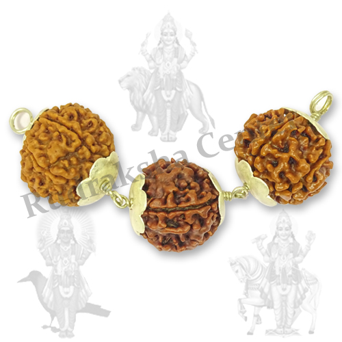 Zodiac Rudraksha Pendant 3