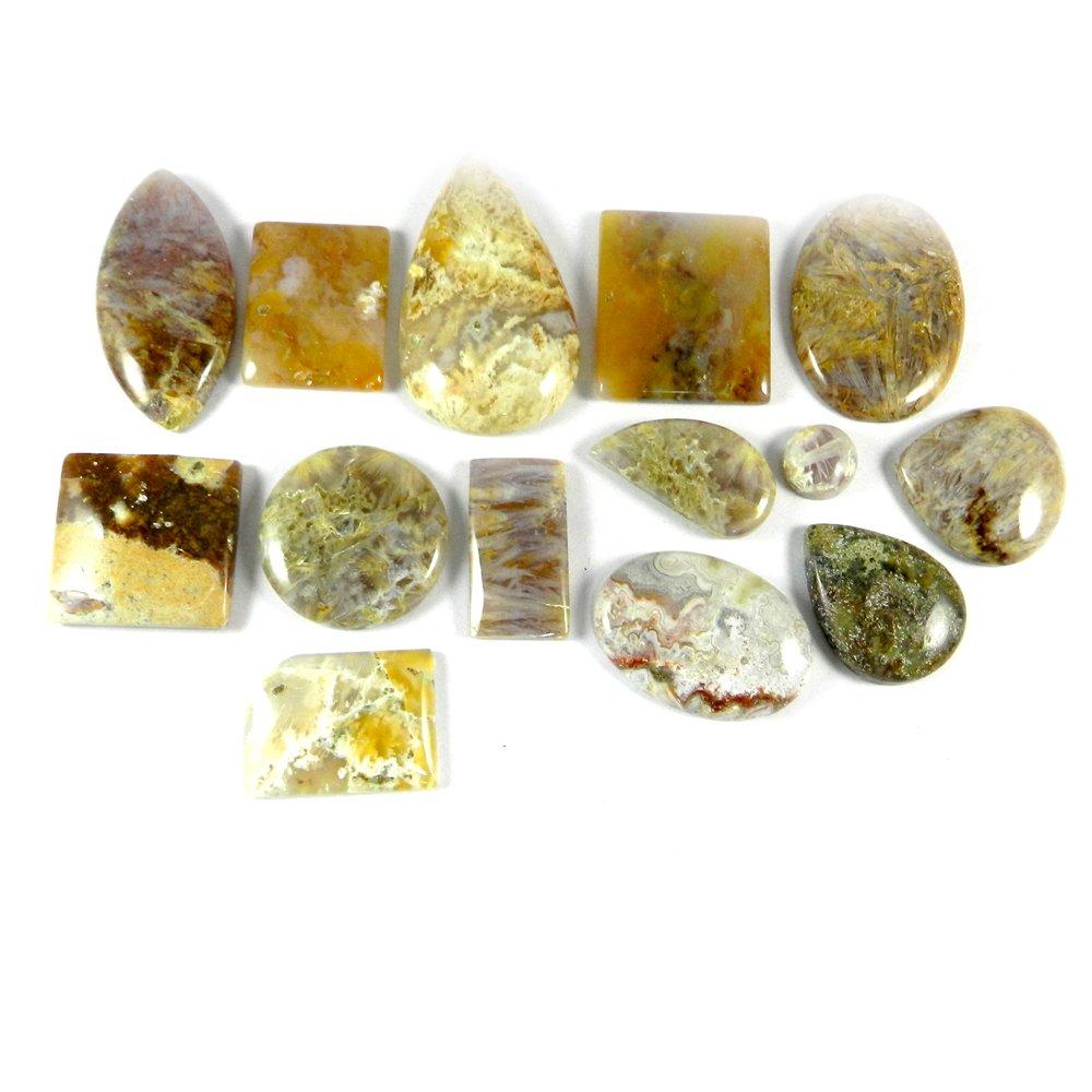 14 Pcs Sagenite Jasper Mix Freeform Cabochon 100 Gms