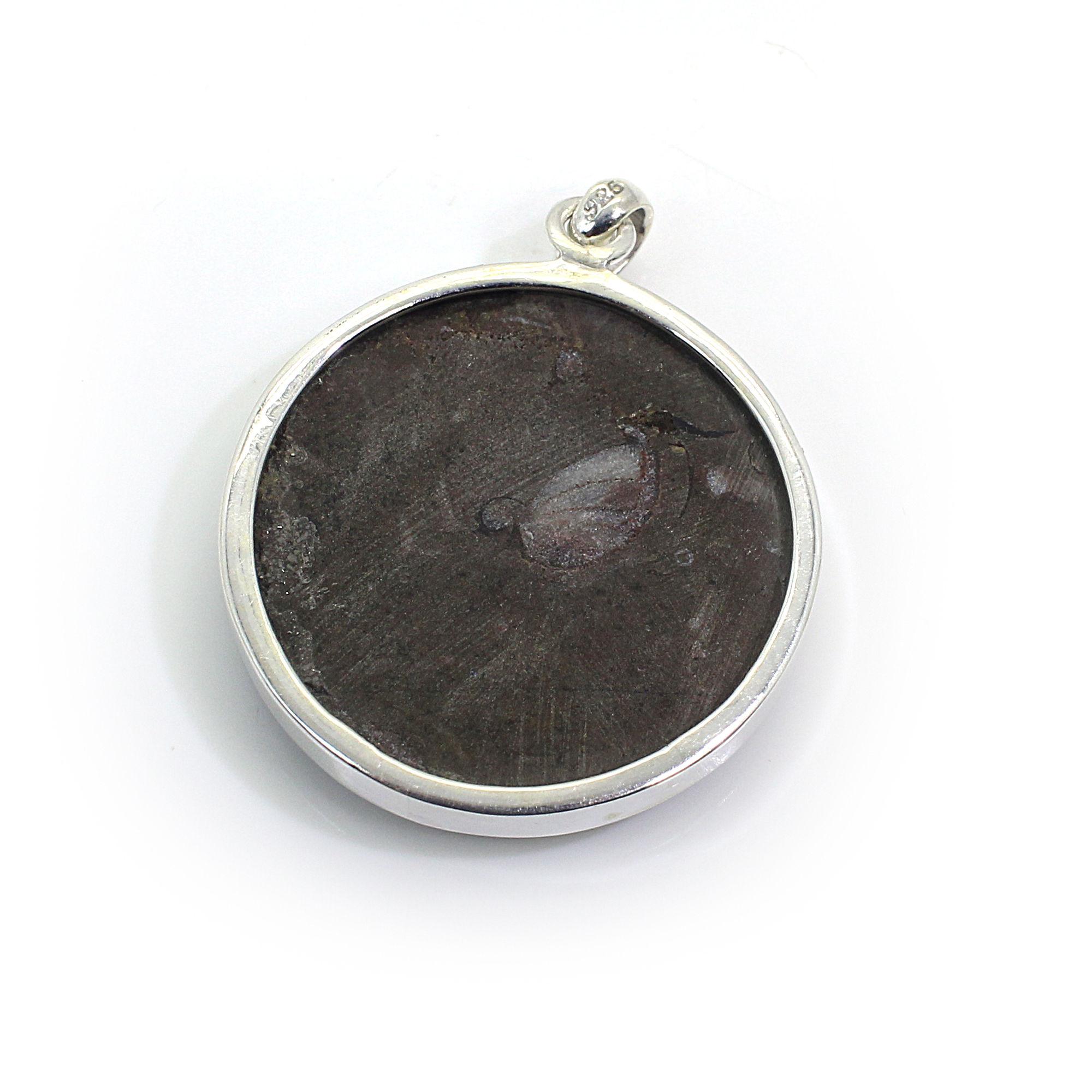 Brown Ammonite Silver Pendant