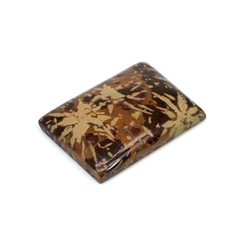 Indian Wholesaler Natural Mushroom Jasper 24.75 Cts Rectangle Cabochon 27x19mm Loose Gemstone